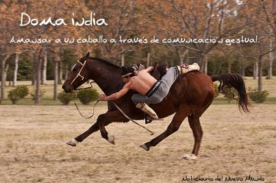 Doma india de caballos