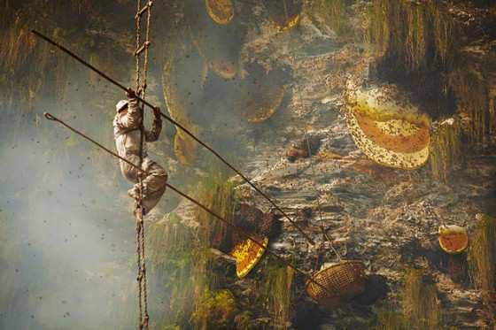 El milenario arte de los recoletores de miel del Himalaya_00