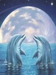 La Nueva Luna de Tauro (Abril 2014) _ La lunación para todos los signos-delfines