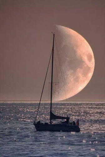 La Nueva Luna de Tauro (Abril 2014) _ La lunación para todos los signos