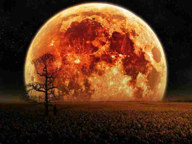 Luna Roja del 15 de abril anuncia un nuevo ciclo evolutivo_.