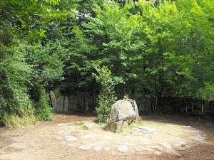 Broncelandia, el bosque secreto de Merlín_Tumba de Merlín.