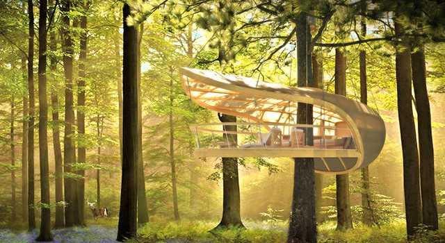 Hoteles construidos en los árboles