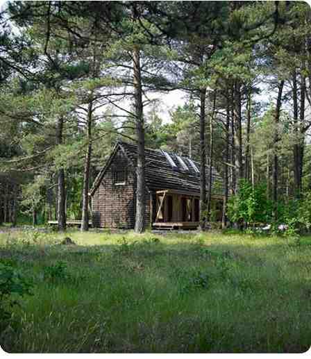Una casa construida con algas_00