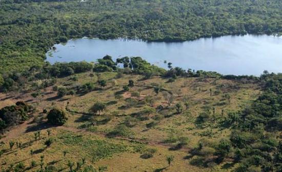 La deforestación del Amazonas revela misteriosas estructuras circulares