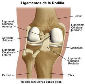 Las rodillas mi flexibilidad, mi amor propio, mi orgullo, mi testarudez-09