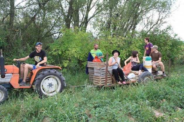 La Agricultura Orgánica se abre un espacio en Polonia_00