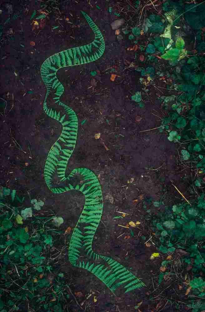 El arte efímero de Andy Golsworthy-Viaje Hacia Si Mismo