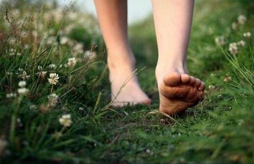 ¿Por qué debes caminar descalzo por el bosque o la importancia de reconectarse con la naturaleza - Viaje Hacia Si Mismo-99