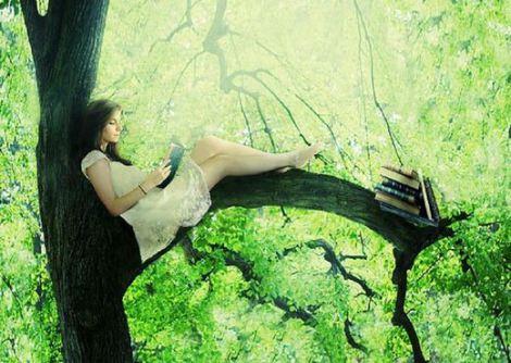 ¿Por qué debes caminar descalzo por el bosque o la importancia de reconectarse con la naturaleza - Viaje Hacia Si Mismo