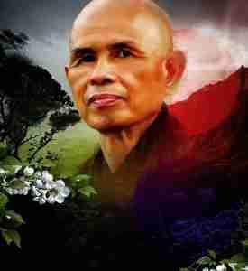 Descubre la Verdadera Naturaleza de tu Ira-Thich Nhat Hanh -Viaje Hacia Si MIsmo