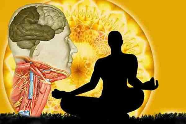 Activa el nervio vago para regenerar el cuerpo - Viaje Hacia Si Mismo