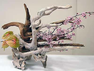 Ikebana La belleza como camino de plenitud-Viaje Hacia Si Mismo-55