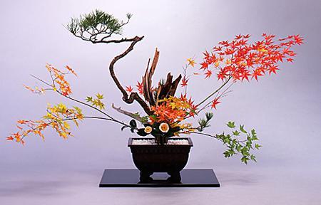 Ikebana La belleza como camino de plenitud-Viaje Hacia Si Mismo-88