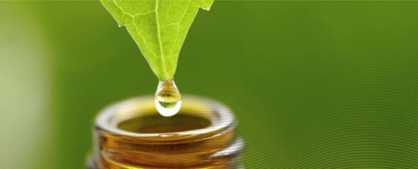 Informe del gobierno suizo la homeopatía es eficaz y económica-Homeopatía-Viaje Hacia Si Mismo