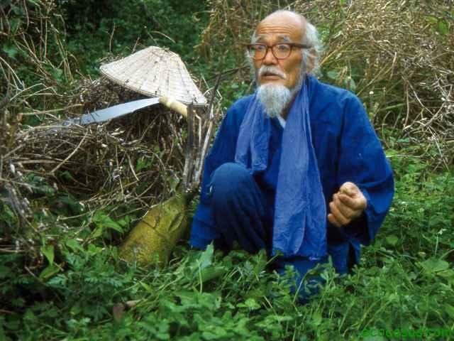 Masanobu Fukuoka y su no-método de Agricultura Natural-Viaje Hacia Si Mismo