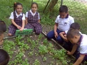 El huerto escolar la importancia de poner en contacto a nuestros hijos con la naturaleza-Viaje Hacia si mismo-00