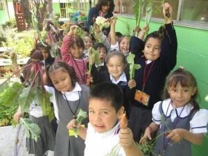 El huerto escolar la importancia de poner en contacto a nuestros hijos con la naturaleza-Viaje Hacia si mismo-33