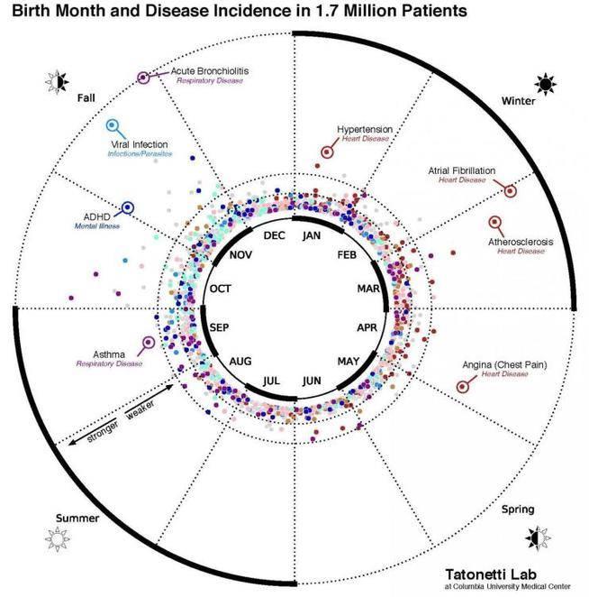 La relación entre el mes de nacimiento y la posibilidad de padecer distintas enfermedades-Viaje Hacia Si Mismo
