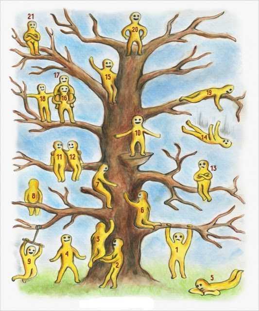 ¿En qué parte del árbol estas (Test)-Viaje Hacia Si Mismo