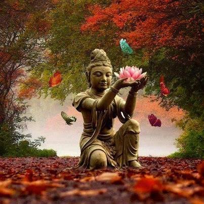 La ley del desapego-Qué nos enseña el budismo-Viaje Hacia si Mismo