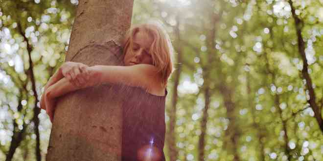 Abrazar árboles ha sido oficialmente validado por la ciencia-Viaje Hacia Si Mismo