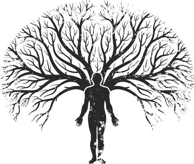 Los Campos Mórficos de Rupert Sheldrake y el Árbol Genealógico-Viaje Hacia si Mismo