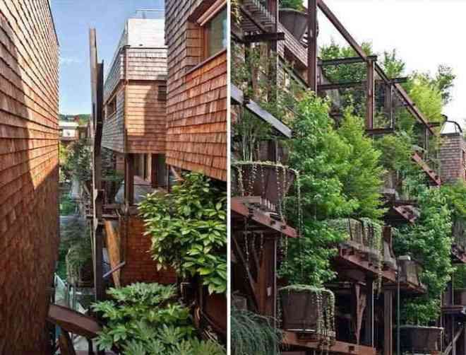 Vivir en un bosque vertical en medio de la ciudad-Viaje Hacia Si Mismo-22